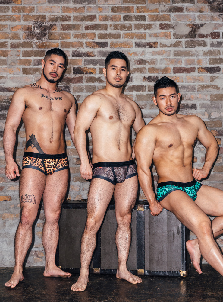 GX3 Boxer GX3 SUPER PRINT ANIMAL BOXER  แพ๊ค 3 ชิ้น